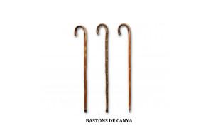 bastons de canya